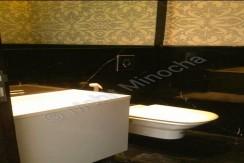 bathroom 24 aug 15 (9)