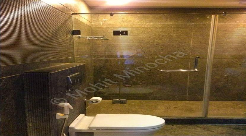 bathroom 2aug2015 (2)