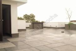 terrace 24 aug 15 (1)