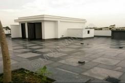 terrace 24 aug 15 (2)