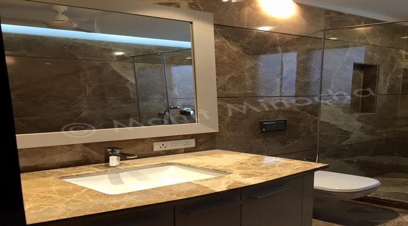 bathroom 14 apr 16 (25)