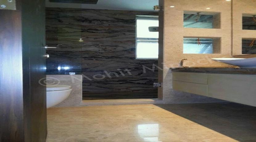 bathroom 14 apr 16 (6)