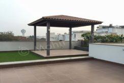 terrace 14 apr 16 (5)
