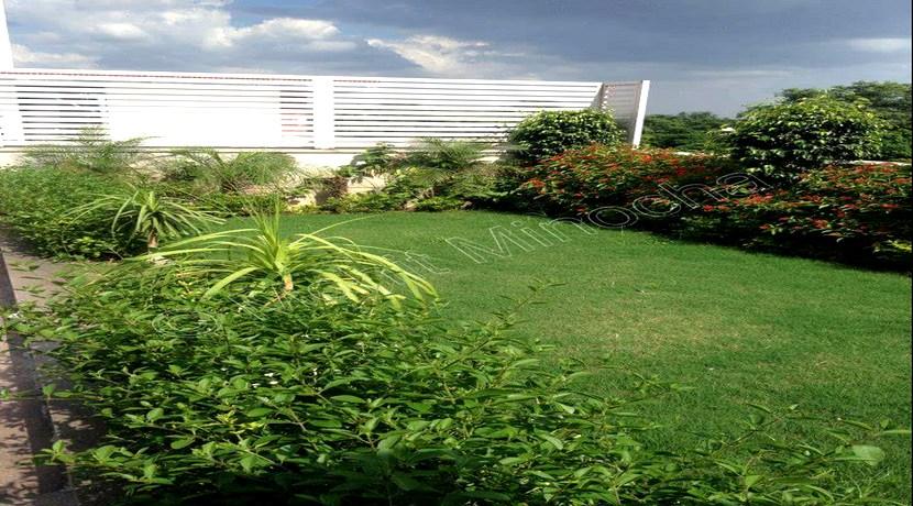 terrace 14 july 16 (12)