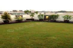 terrace 14 july 16 (4)