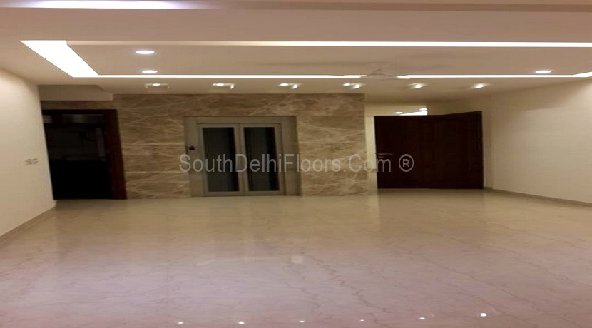 Property in Panchsheel Enclave – 350 Yards Basement and Ground Duplex