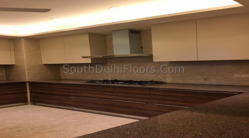 Vasant Vihar New Delhi (15)