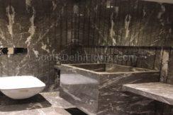 Vasant Vihar New Delhi (8)