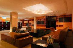 panchsheel park n block furnished (18)